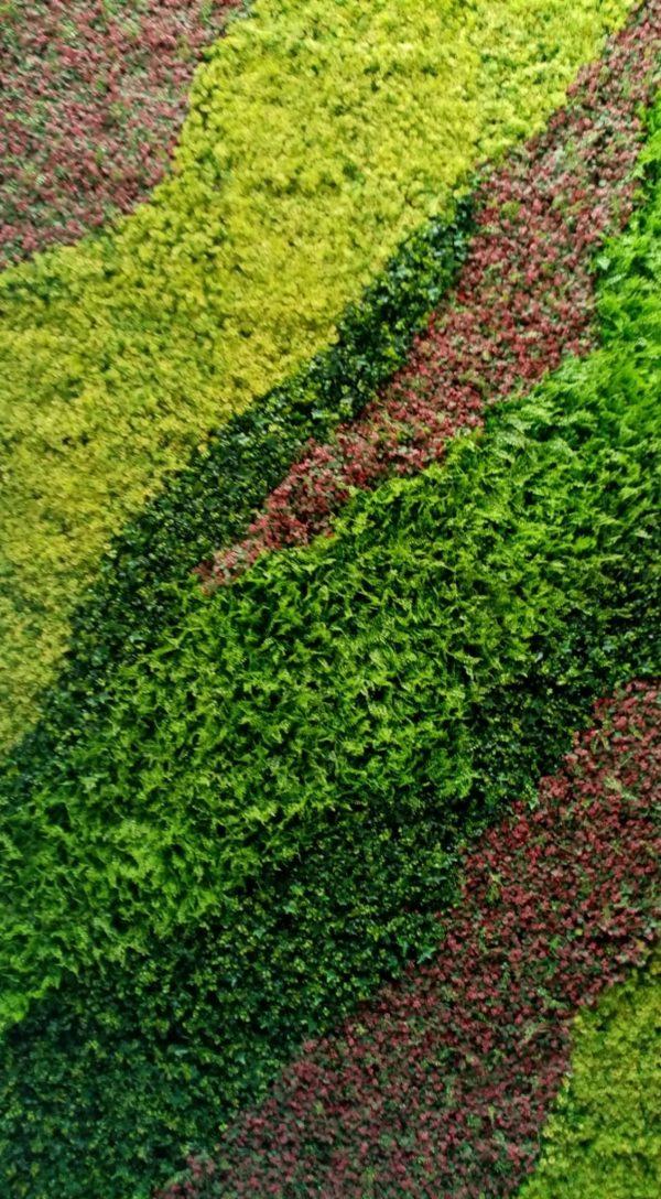jardin vertical organico
