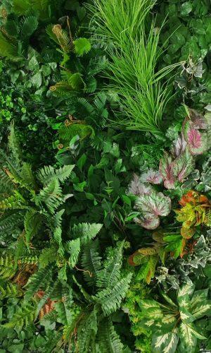 jardin vertical artificial premium